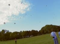 12_kite4.jpg
